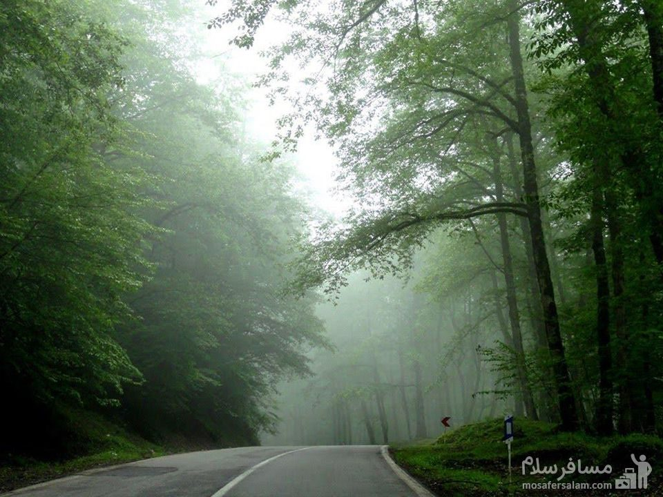 جاده عباس آباد