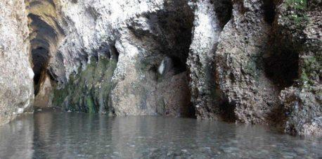 غار لادیز