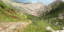 کوهستان پاوه
