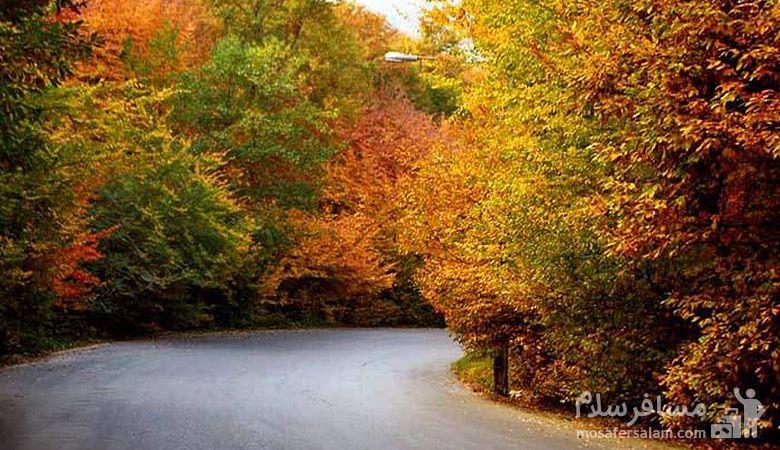 جنگل گلستان, جاذبه پاییزی