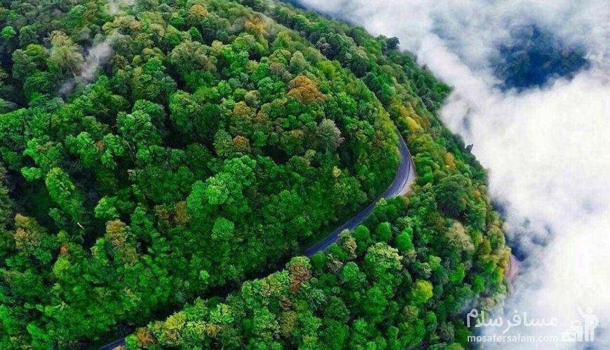 جاده خلخال به اسالم، رویایی ترین جاده جنگلی ایران