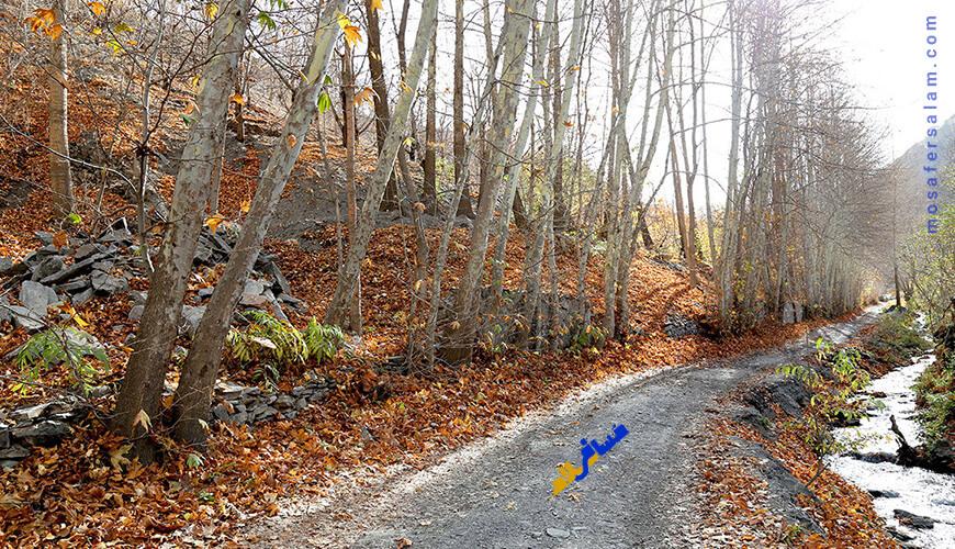 مسیر دسترسی روستا کردینه