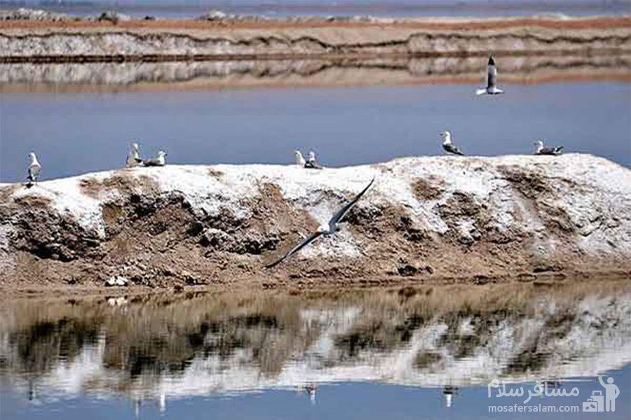 تالاب میقان-گنبدهای نمکی