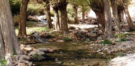طبیعت چشمه قلقل دامغان