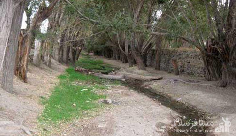 رودخانه ساروق | رودخانه های مشهد