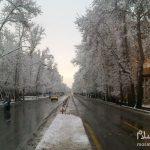 هتل های منتهی به خیابان ولیعصر تهران