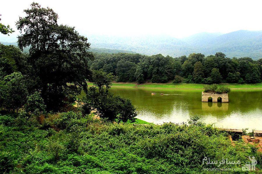 جنگل های زیبا اطراف دریاچه عباس آباد