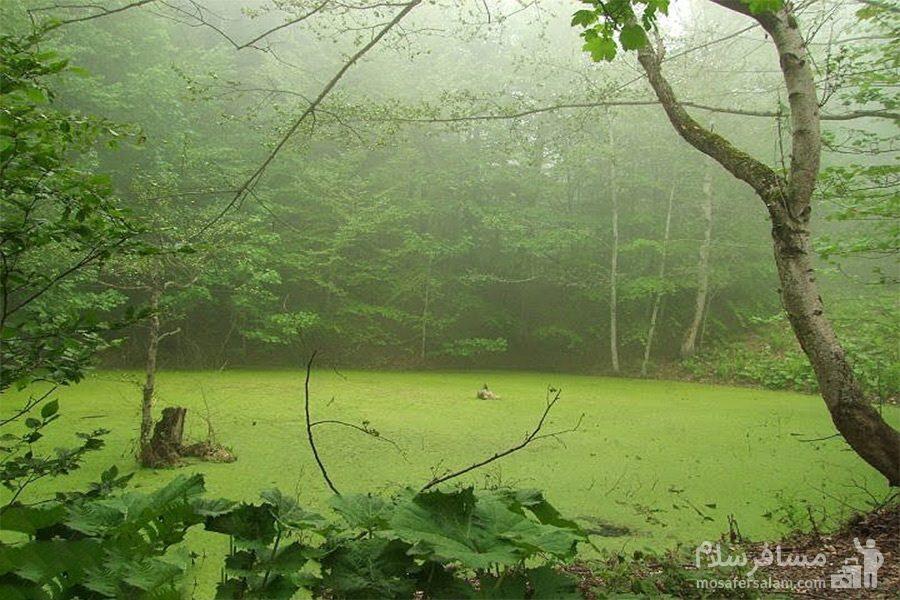 طبیعت منحصربفرد آبشار سمبی