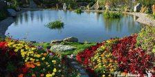 نمایی از باغ پرندگان مشهد