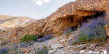بهار غار مغان مشهد