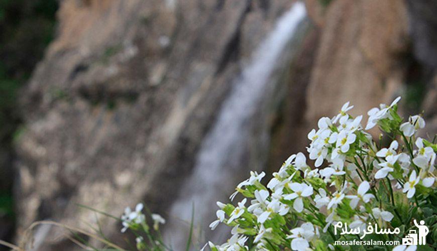 طبیعت و آبشار گویله