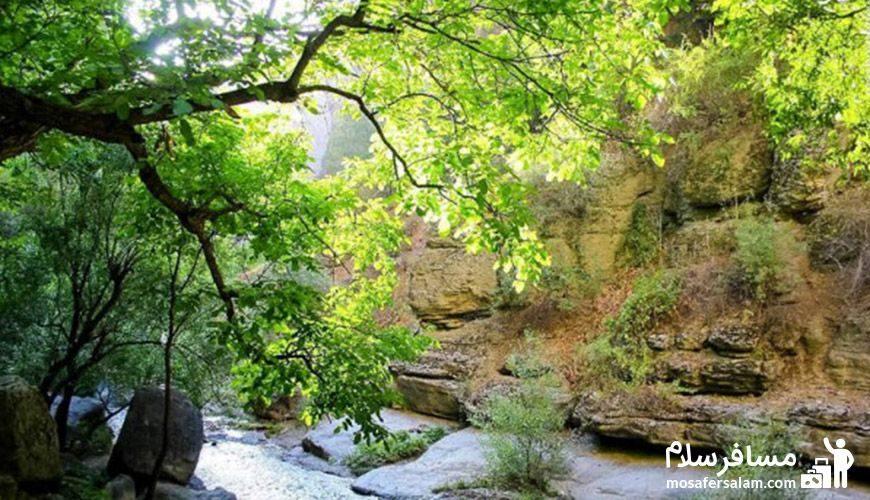 منظره سرسبز دره شمخال