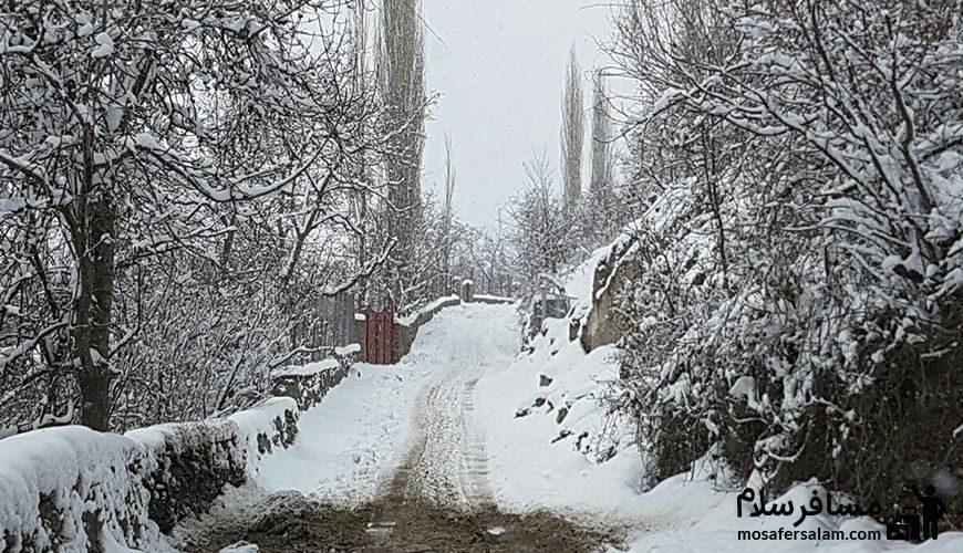 تصویر زیبا از جاده پیست اسکی