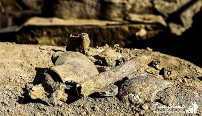 محل کشف استخوان های 2800 ساله در استان همدان تبدیل به انبار شهرداری شد!