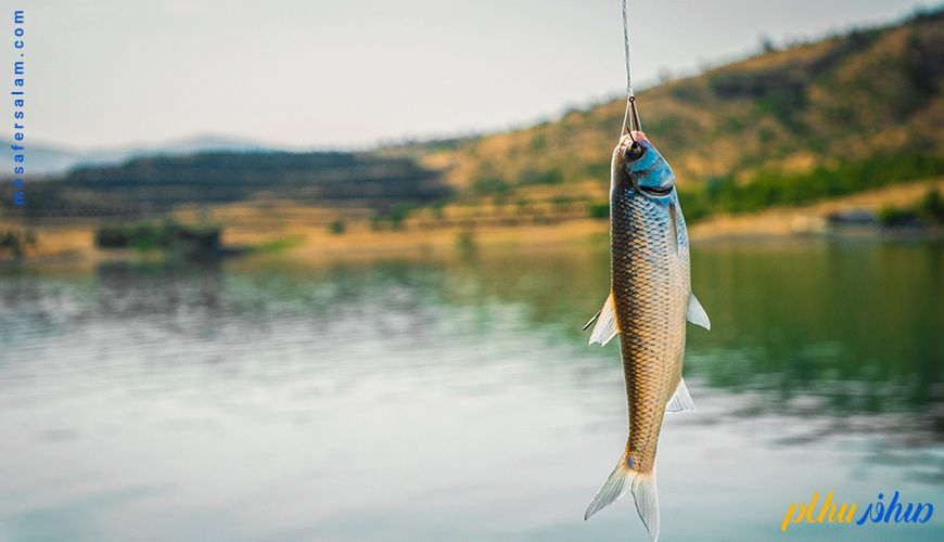 پرطرفدارترین مناطق ماهیگیری در ایران