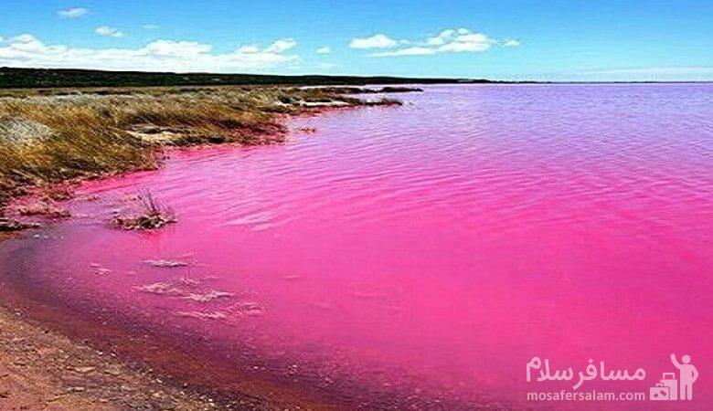 دریاچه صورتی-تالاب لیپار