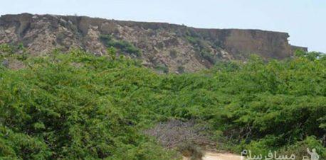 طبیعت تالاب لیپار