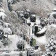 زمستان در پارک لاله