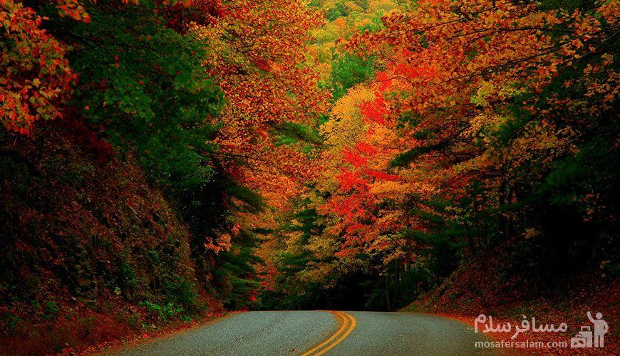 بهترین زمان برای سفر در پاییز, رزرواسیون مسافر سلام