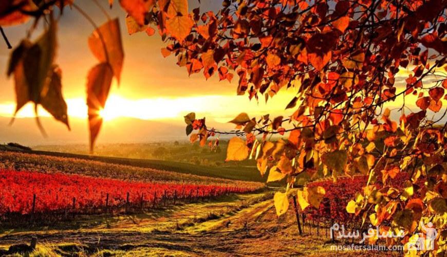 فصل پاییز, رزرواسیون مسافر سلام