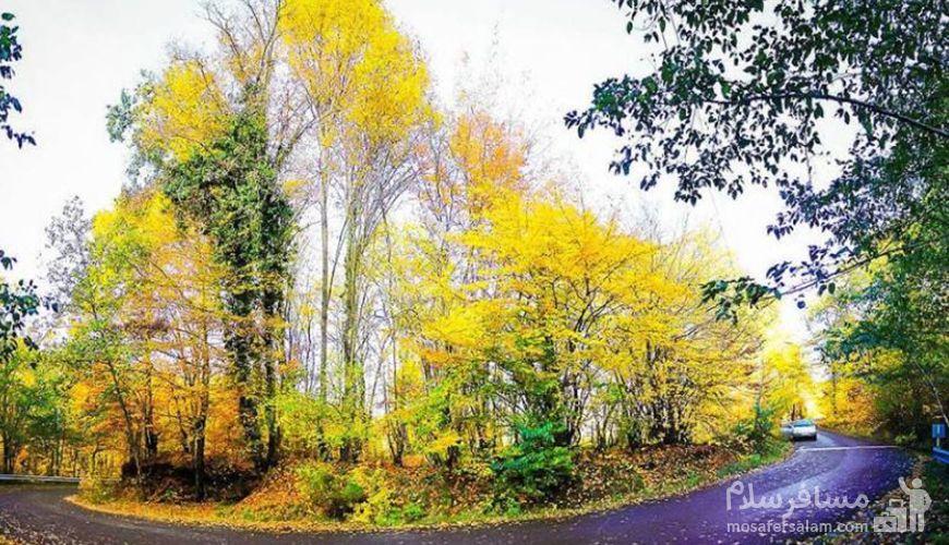 جنگل النگدره, پاییز