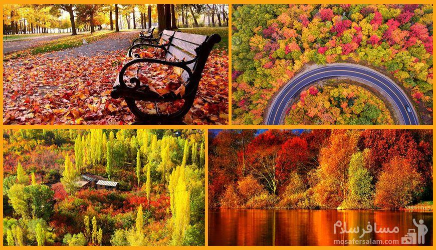 زیباترین مناطق ایران برای دیدن برگ های پاییزی پاییزی
