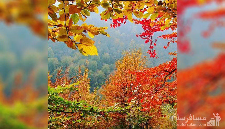 پاییز, لوندویل گیلان