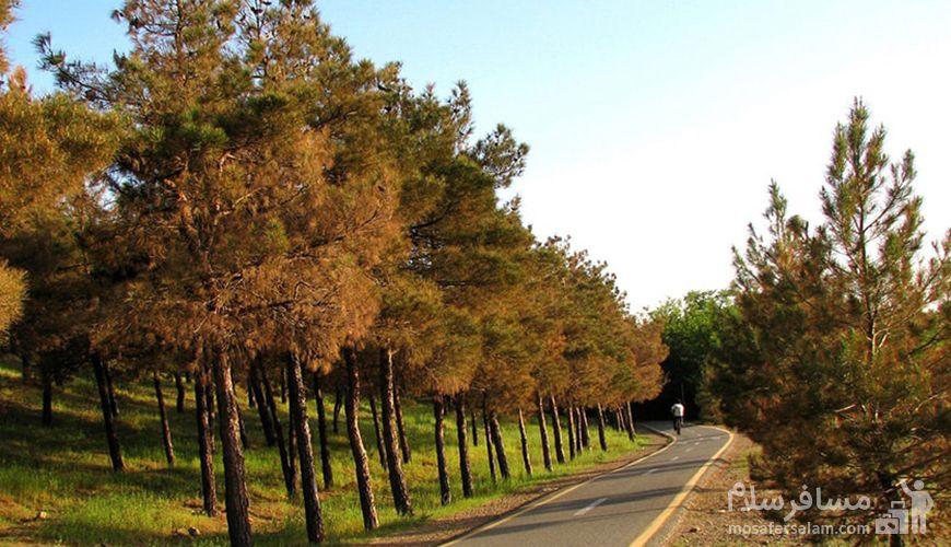 با پیست دوچرخه سواری چیتگر در پارک های تهران رکاب بزنید