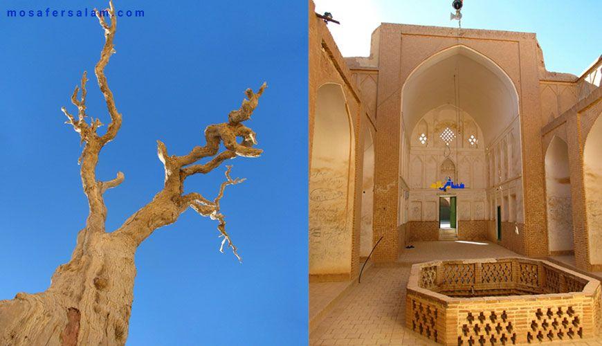مجموعه تاریخی شهدای فهرج یزد, روستا فهرج
