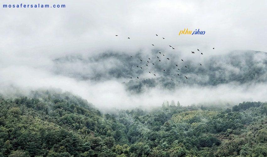 ارتفاعات گیلان