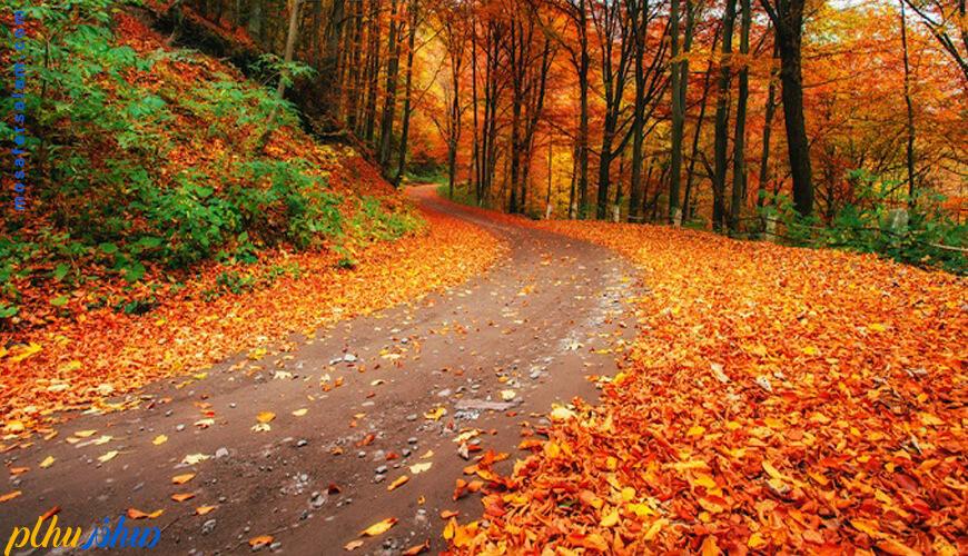 سفر در چه فصلی از سال لذت بخش تر است؟